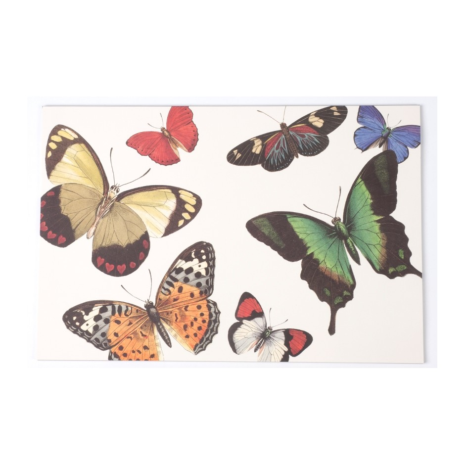 'Butterflies' Tovaglietta illustrata by Vicki Sawyer